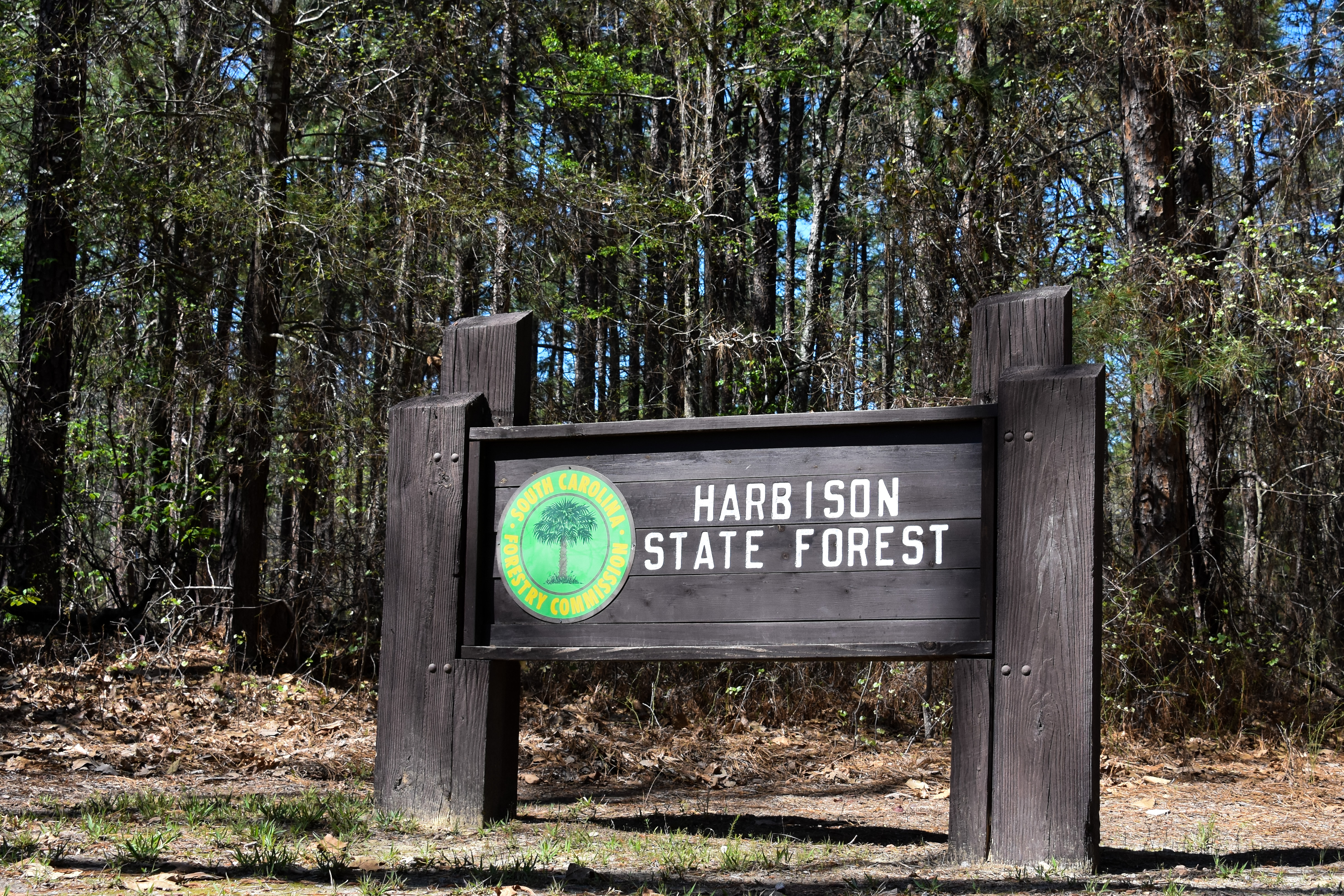 Harbison State Forest Trails